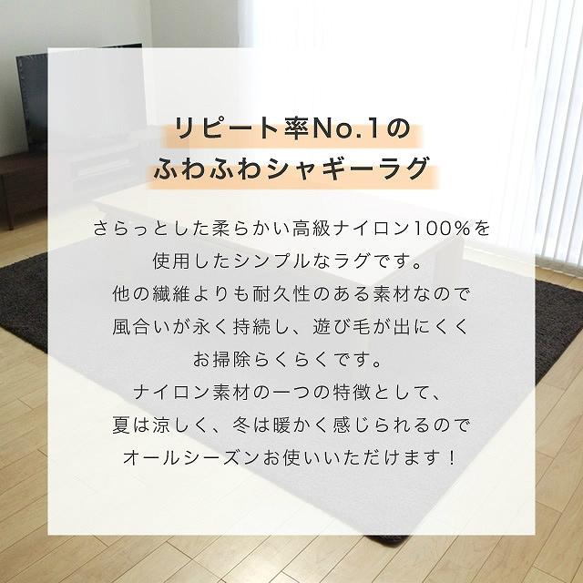 シャギーラグ ジャスパー 100×150cm プレーベル