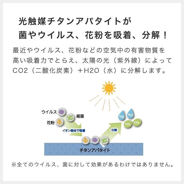 抗ウイルス機能が追加されたラグ ジャスパープラス 140×200cm プレーベル