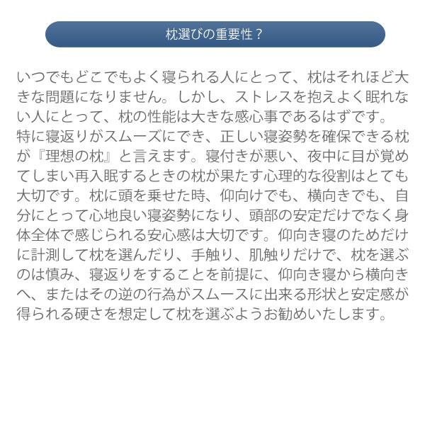 ドクターエル・モーフィアス枕・Nelgu・ねるぐ 今治タオルカバーセット モカ