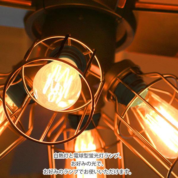 白熱灯/電球型蛍光灯/LED電球対応